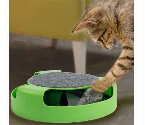 Παιχνιδι Κινησης για Γατες με Ταπητα για Ακονισμα