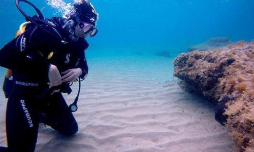 35€ για 1 καταδυση γνωριμιας (scuba diving), απο την Go Scuba Diving στην παραλια Αγιας Μαρινας