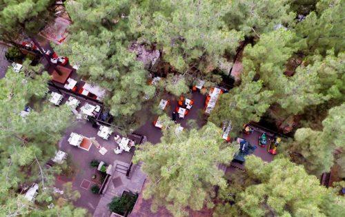 Η πιο μαγευτικη προταση εξοδου & διασκεδασης στο αγαπημενο Fragma Thermis Coffee-Restaurant μπροστα στην λιμνη του φραγματος της θερμης και μεσα στο δασος!  Απολαυστε café | χυμο | ποτηρι κρασι | μπυρες (draft) | φιαλη κρασιου και plateau τυριων – αλλαντικων | σωληνα μπυρας 2,5lt!